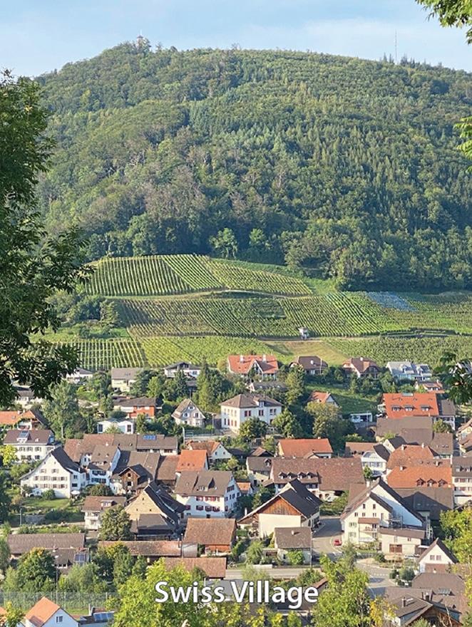 Relationships--Swiss Village